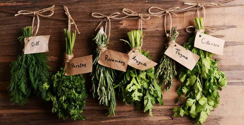 Herb Garden Blend